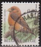 Sellos del Mundo : Europa : Bélgica : Belgica 2000 Scott 1785 Sello º Aves Oiseaux Beccroisé des Sapins 1fr Belgique Belgium