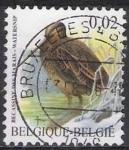 Sellos del Mundo : Europa : Bélgica : Belgica 2003 Scott 1971 Sello º Aves Oiseaux Becassine des Marais 0,02€ Belgique Belgium