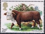 Stamps Europe - United Kingdom -  LA CRIA DE GANADO BRITÁNICA. TORO HEREFORD