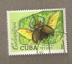 Stamps Cuba -  Escarabajo