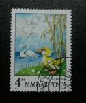 Stamps Hungary -  Cuentos. El patito feo