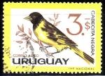 Sellos del Mundo : America : Uruguay : Cabecita Negra