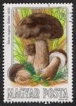 Sellos de Europa - Hungría -  SETAS-HONGOS: 1.164.002,01-Boletus edulis -Phil.47537-Dm.984.55-Y&T.2936-Mch.3709-Sc.2874