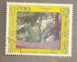 Sellos de America - Cuba -  Escuela San Alejandro