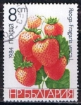 Stamps Bulgaria -  Scott  2966  Fresas (3)