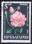 Stamps Bulgaria -  Scott  3075  Rosa damascena (4)