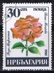Stamps Bulgaria -  Scott  3078  Rosa marista (5)