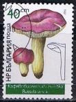 Stamps Bulgaria -  Scott  3236  Russula vesca (2)