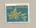 Sellos de Oceania - Australia -  Dragón de mar filamentoso
