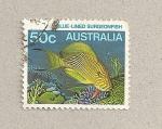 Stamps Australia -  Pez cirujano azulado