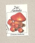 Sellos de Oceania - Australia -  Setas Cortinarius cinnabarinus