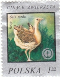 Stamps Poland -  GINACE