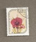 Stamps America - Cuba -  Flores exóticas