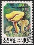 Stamps North Korea -  SETAS-HONGOS: 1.205.061,01-Hydnum repandum -Phil.41632-Dm.991.23-Y&T.2217-Mch.3186-Sc.2983