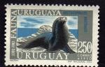 Sellos del Mundo : America : Uruguay :  Lobo Fino