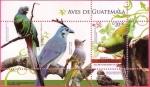 Stamps Guatemala -  Aves de Guatemala