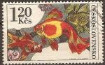 Sellos del Mundo : Europa : Checoslovaquia : Peces de Arrecife