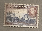 Stamps Asia - Sri Lanka -  Trincomalee
