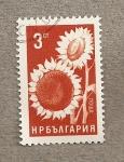 Stamps Bulgaria -  Girasoles