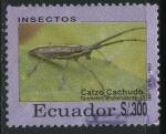 Sellos de America - Ecuador -  Insectos - Catzo Cachudo