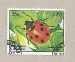Stamps United Arab Emirates -  Mariquita de San Antón