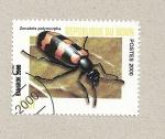 Stamps Benin -  Zonabris polymorpha