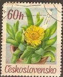 Sellos del Mundo : Europa : Checoslovaquia : Flores del gardin botánico Glottiphyllum Davisii