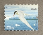 Sellos de Europa - Portugal -  Año Polar Inernacional