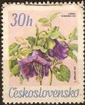 Sellos del Mundo : Europa : Checoslovaquia : Flores del gardin botánico,Cobaea Scandens