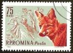 Sellos del Mundo : Europa : Rumania : R.P ROMINA - ZORRO