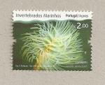 Stamps Portugal -  Invertebrados marinos de las Azores