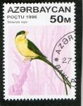 Stamps Asia - Azerbaijan -  AVES.  TETRAENURA  REGIA