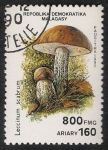 Sellos de Africa - Madagascar -  SETAS-HONGOS: 1.182.006,01-Leccinum scabrum -Phil.47156-Dm.990.100-Y&T.1012-Mch.1293-Sc.1001H