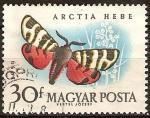 Sellos del Mundo : Europa : Hungría : Mariposas diversas-Arctia Festiva