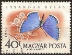 Sellos del Mundo : Europa : Hungría : Mariposas diversas-Lysandra Hylas