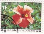 Sellos del Mundo : Africa : Comores : flores