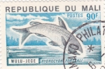 Stamps Mali -  peces