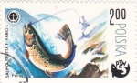 Sellos de Europa - Polonia -  pesca