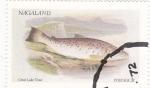 Stamps Nagaland -  peces