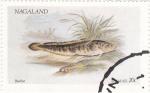 Sellos del Mundo : Asia : Nagaland : peces