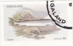 Sellos de Asia - Nagaland -  peces
