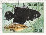 Sellos de America - Nicaragua -  peces
