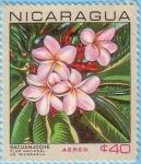 Stamps America - Nicaragua -  Sacuanjoche Flor Nacional