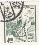 Sellos de Asia - Corea del sur -  recoleccion