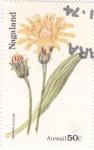 Stamps Asia - Nagaland -  flores