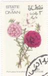 Sellos de Asia - Omán -  flores