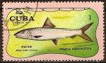 Sellos del Mundo : America : Cuba : Pesca deportiva (Macabi).