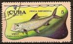 Sellos del Mundo : America : Cuba : Pesca deportiva (Sabalo).