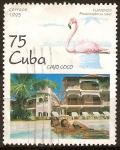 Sellos del Mundo : America : Cuba : Flamenco-Cavo Coco