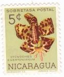 Stamps Nicaragua -  flores